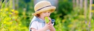 enfant legumes Ausylphi