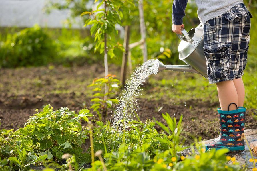 Activités de jardinage à faire avec les enfants